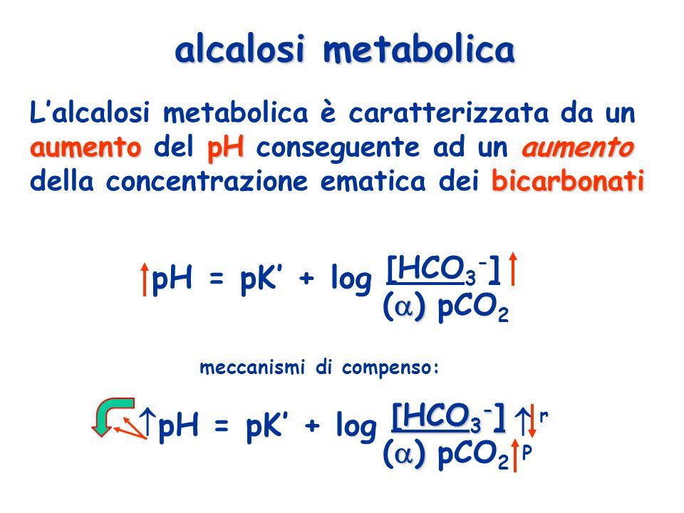 pH = pK' + log [HCO3-] pH = pK' + log [HCO3-]  alcalosi metabolica